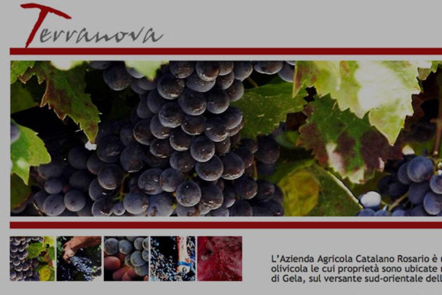 Terranova Vini racconta l'esprerienza avuta con noi